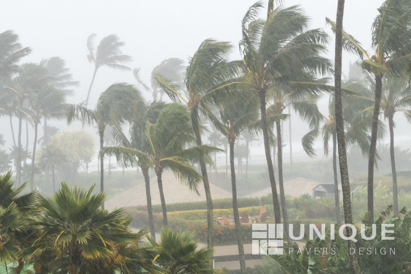 How weather affects your pavers with palm trees blowing in the rain and wind