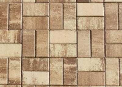 sand dollar pavers