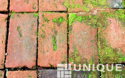 Identifying Different Stains on Your Pavers