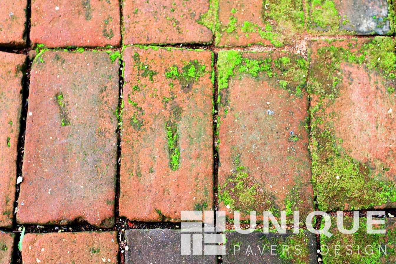 Southwest Florida Paver Stain Removal